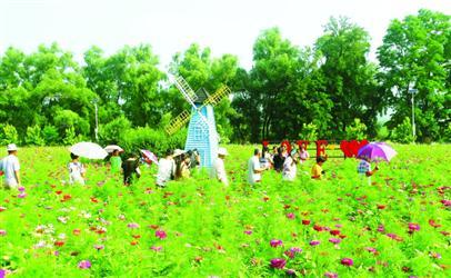 贾家店农场的美景吸引了不少游客