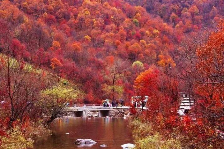 本溪枫叶风景区