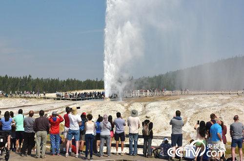 美国黄石国家公园奇观:地热喷泉喷涌数十米高
