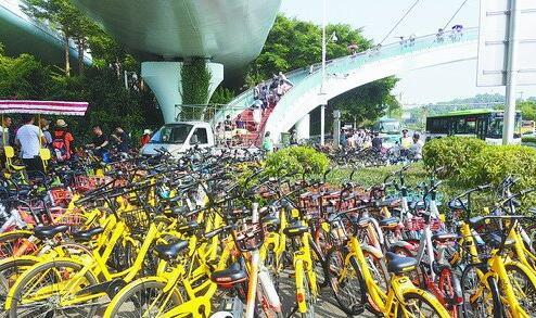 厦大白城附近共享单车扎堆