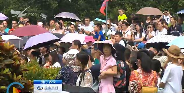 国庆假期过半 新老景点依旧人气旺厦门广电网www.btnxm.com.cn