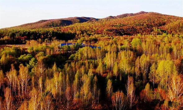 黑龙江省伊春市溪水国家森林公园一角