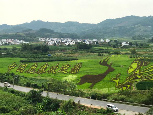 广西南宁山地风景高清