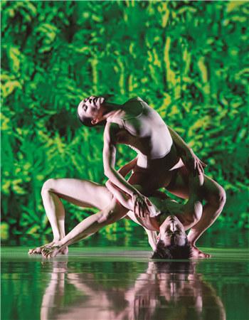 绿色金色交杂的稻丛特写有如森林,浸浴其中的男女舞者,身体始终缠绵交织。 刘振祥/摄