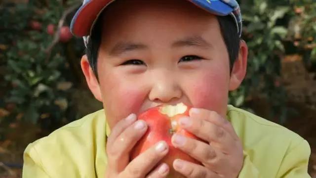 """""""走红""""之后的苹果更赚钱"""