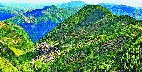 同安区生态资源丰富,森林覆盖率居全市之首。图为西坑梯田。