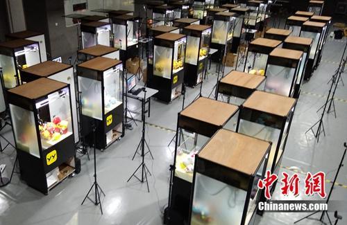 集体存放在上海某仓库内的娃娃机,供网友在线抓娃娃使用。