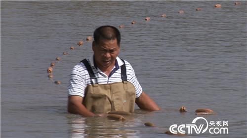 致富经:水上烧火 水下赚钱(20171129)