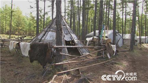 """乡土节目看点:鹿背上的""""原始部落"""" 12月6日"""