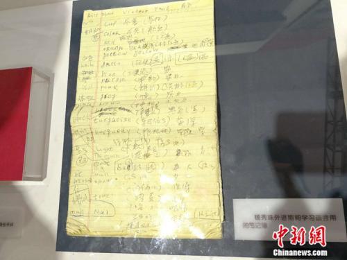 """资料图:""""砥砺奋进的五年""""大型成就展中展出杨秀珠外逃期间学习语言的笔记。中新网记者 张尼 摄"""