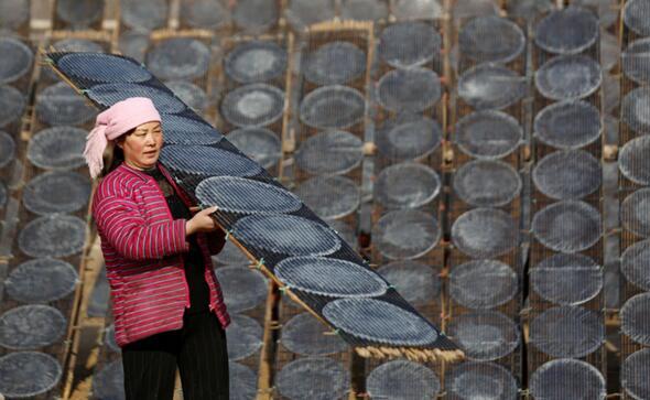 12月12日,山东省临沂市河东区汤头街道小康村村民在晾晒地瓜粉皮。