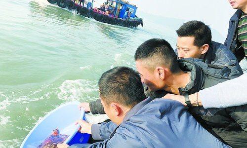 工作人员将玳瑁海龟放生。