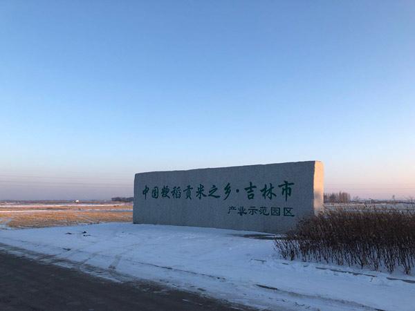 ↑吉林东福米业的产业示范园,现水稻种植面积约3000公顷。