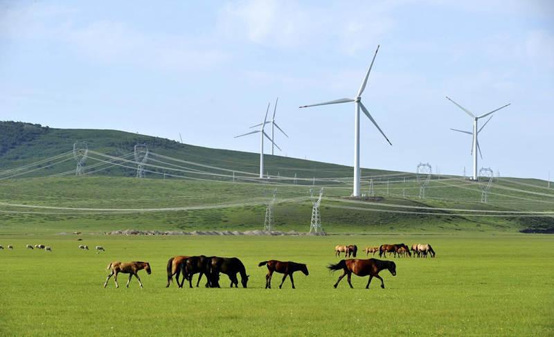 (圖為清潔能源大電網,由國家電網內蒙古東部電力有限公司提供)