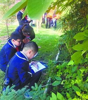 孩子们走进植物园