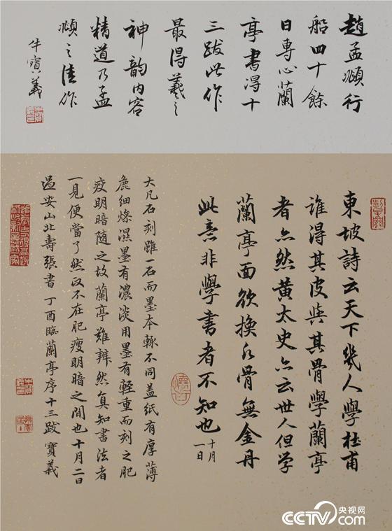 牛宝义-赵孟頫兰亭序十三跋
