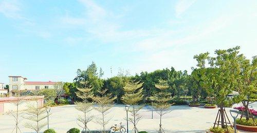 宋江阵公园整治提升后,干净整洁,视野开阔。