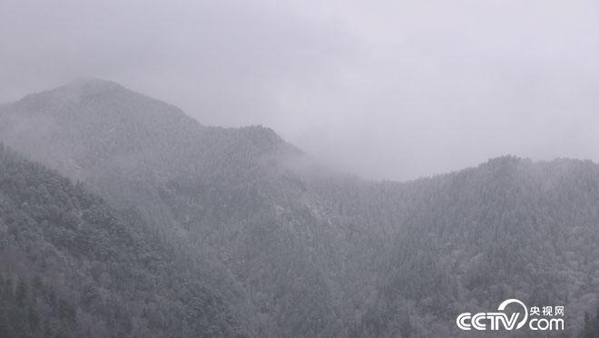 乡土:冬日里的孟屯味道 1月9日