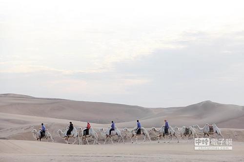 大陆许多沙漠都有骑骆驼行程,是台湾没有的游旅体验