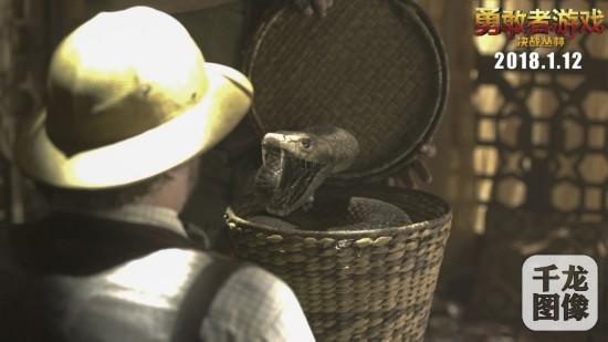 黑曼巴蛇发动攻击