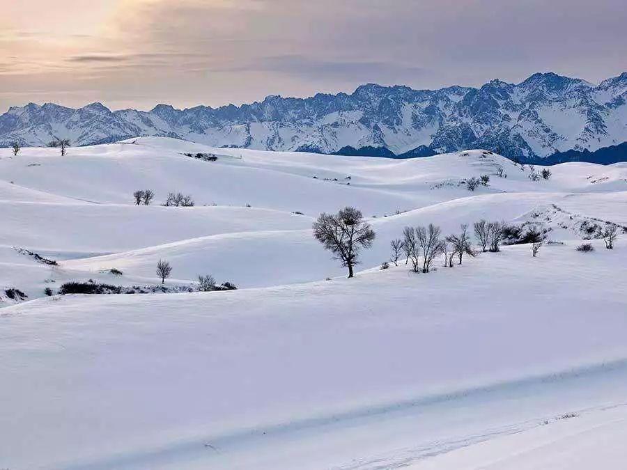 揭秘被雪景掩盖的美食大省 没有256g的胃千万别来【红外线透视郭晶晶】