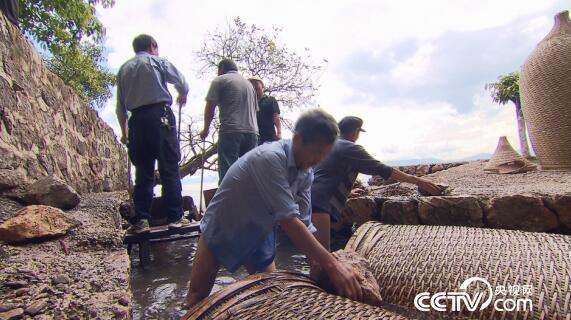 美丽中国乡村行:抚仙湖的神奇捕鱼 2月1日