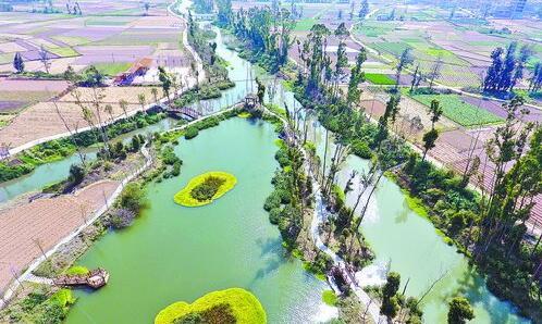 经过治理后,翔安的莲溪不仅水质明显改善,还被打造成了一条美丽的生态景观长廊。