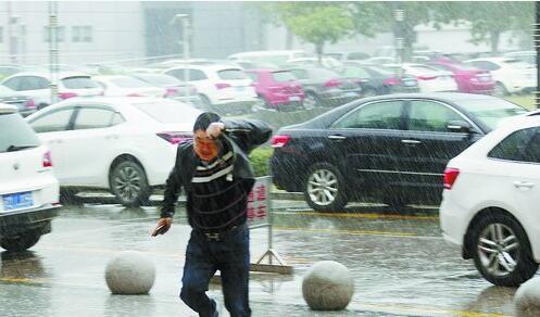 昨日有小阵雨,没带伞的路人只好用衣物遮雨。