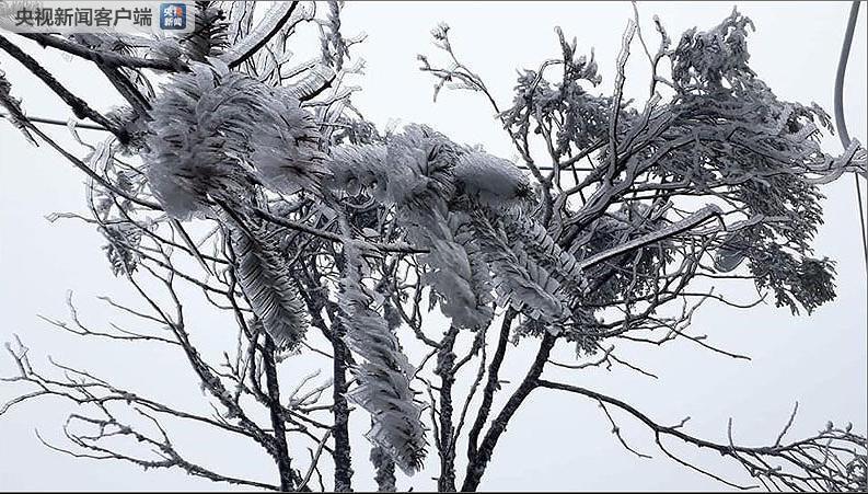 六合高手冷空气影响增强 越南北部罕见出现降雪
