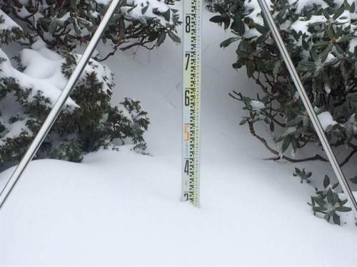 苗栗县雪霸公园管理处指出,雪山主峰沿线海拔高于369山庄的山区,普遍已积雪超过30厘米。