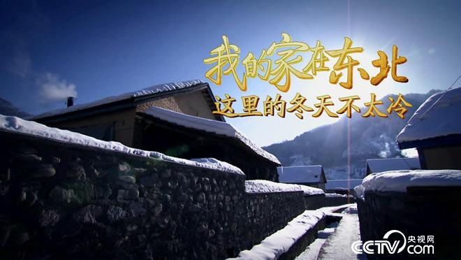 乡土:我的家在东北-这里的冬天不太冷 2月14日