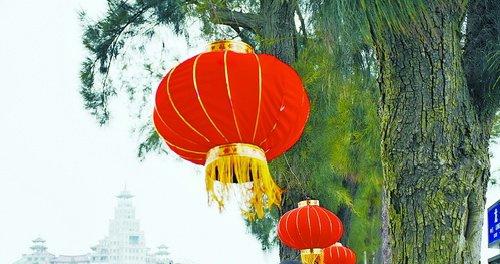"""龙舟池畔,红灯笼在树上""""荡秋千"""",游客兴致勃勃."""