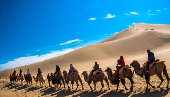 2月19日,游客骑骆驼畅游敦煌鸣沙山。