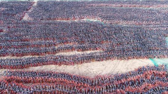 2018年1月17日,在宁夏银川福州南街一大片空地上,看到密密麻麻有数千辆共享单车停放在这里,周围有铁丝网围着,还有工作人员不断把车拉进来,停放在此地。