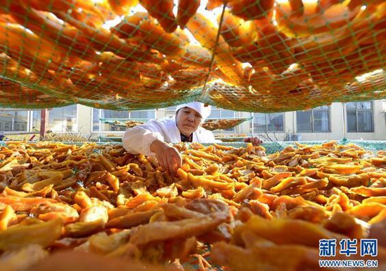 2月25日,河北省乐亭县毛庄镇佳音农产品专业合作社的社员在晾晒红薯干。