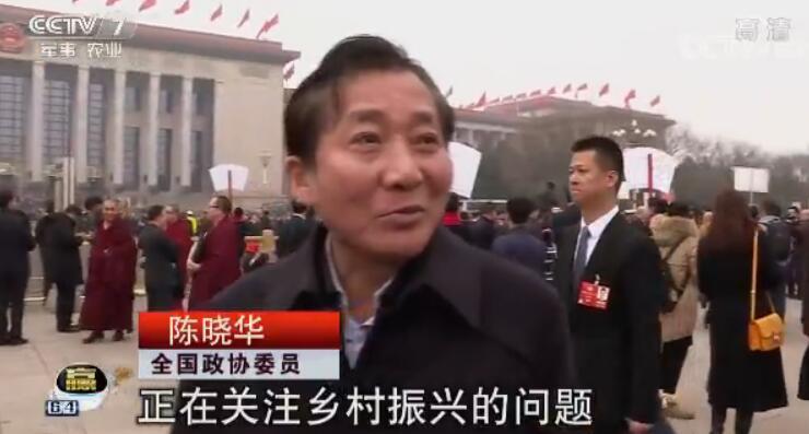全国政协委员 陈晓华