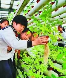 山东省滨州市博兴县第一小学的学生们在植物生态馆里学知识。新华社发