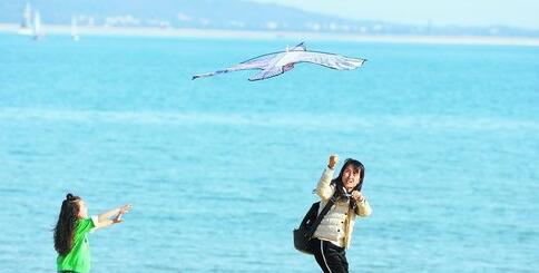 昨日,我市天气晴朗,市民纷纷走出户外活动。图为市民在环岛路海边放风筝
