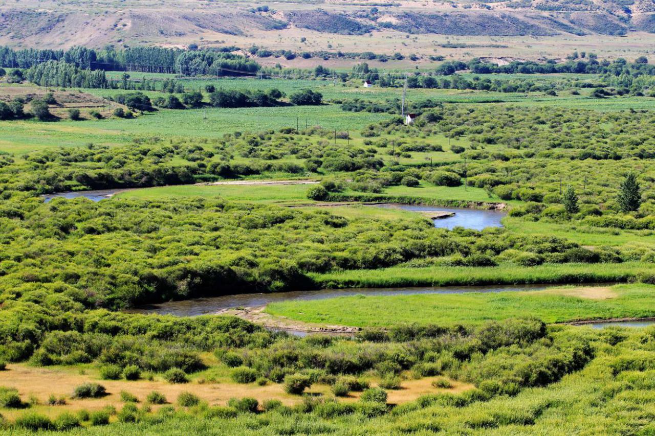 内蒙古绿色生态