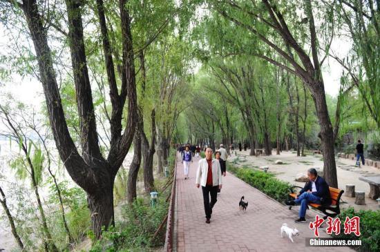 资料图:民众在一健身步道上行走。中新社记者 杨艳敏 摄