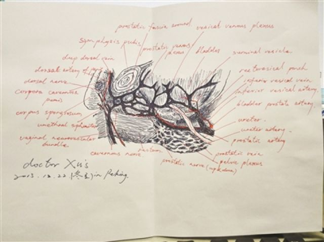 ↑徐国良绘制的外科解剖图