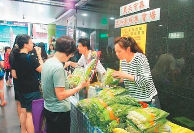 顾客在新北市三重区的小农市集选择蔬果。