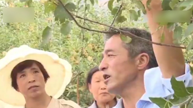 靳志强在给村民讲解嫁接技术