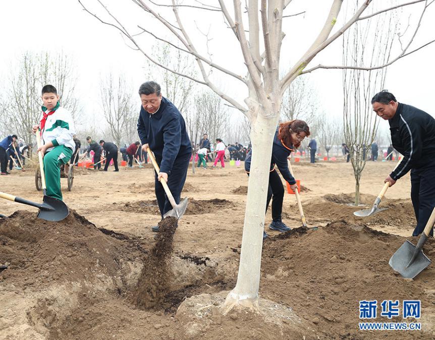 2018年4月2日,习近平来到北京市通州区张家湾镇参与首都责任栽树活动。(图片来历:新华社)
