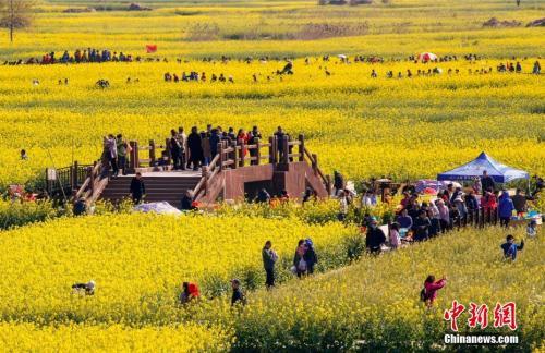 4月7日清明小长假最后一天,江苏兴化千垛景区赏花观景的人流如潮。 汤德宏 摄