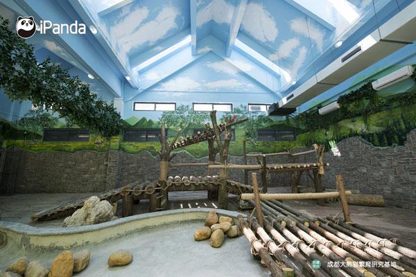 大熊猫馆的场布图