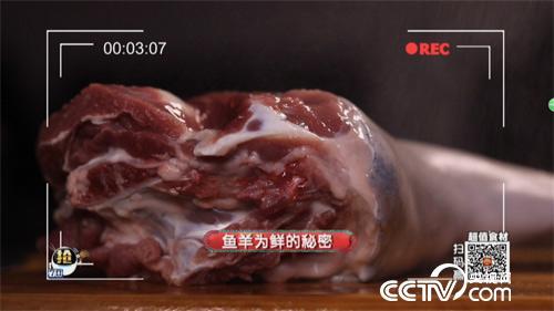 食尚大轉盤:魚羊為鮮的秘密 4月15日