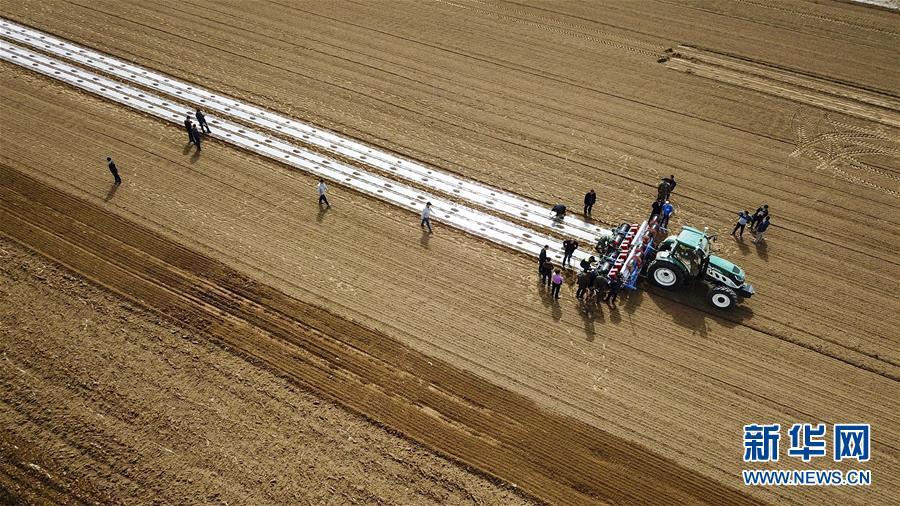 """在新疆库车县牙哈镇的一处棉田,""""智能拖拉机""""在进行播种作业(3月23日无人机拍摄)。国家统计局4月17日发布数据,初步核算,一季度国内生产总值198783亿元,按可比价格计算,同比增长6.8%。"""