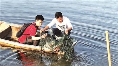 经过多次清淤的湖北洪湖小龙虾养殖水塘即将迎来丰收