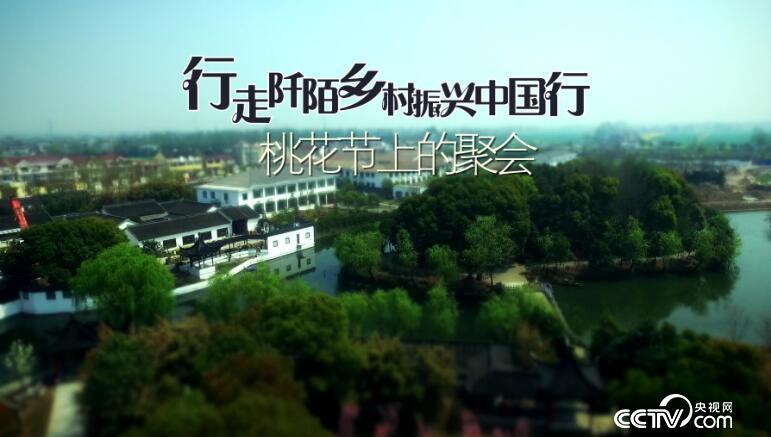 乡土:行走阡陌乡村振兴中国行 桃花节上的聚会 5月4日
